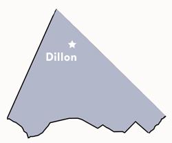 Dillon County