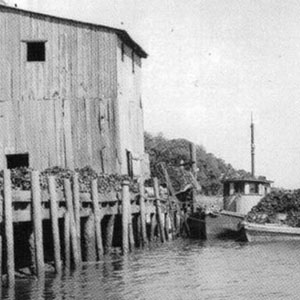 South Carolina Oyster Industry: A History