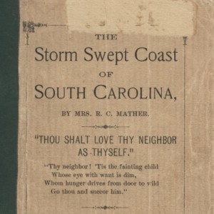 The Storm Swept Coast of South Carolina