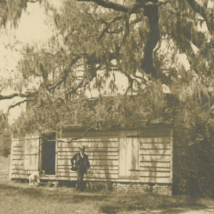 The Antebellum South (1816 - 1860)